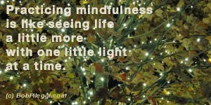 Practicing mindfulness is like seeing life a little more - one little light at a time.